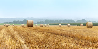 Hay Bales on a foggy morning Stock Images
