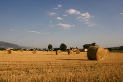 Hay bales, Foligno Royalty Free Stock Images