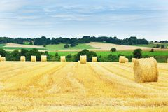 Hay bales in French countryside Stock Image