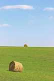 Hay Bales. Freshly baled hay in a field royalty free stock photo