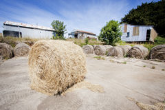 Hay bales in front of farm. Rolled hay bales in front of farm buildings in countryside Royalty Free Stock Photos