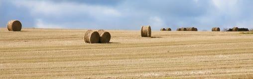 Hay bales on golden field. Hay bales on golden field on a sunny autumn day. Thy, Denmark royalty free stock photography