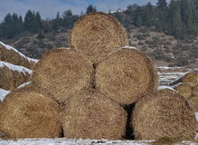 Hay bales. Golden hay bales with mountain background Stock Photos