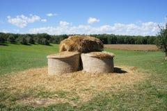 Hay Bales, grünes Gras, Bäume und blauer Himmel Lizenzfreie Stockfotografie