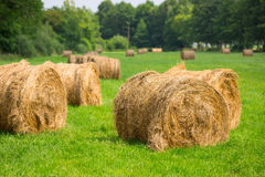 Hay bales on the grass field Royalty Free Stock Photos