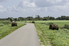 hay bales in green field in holland Stock Photography