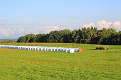 Hay bales in green field. View of farm land with hay bales wrapped in white plastic laying on green pasture with flatbed trailer off to the side with puffy white Stock Images