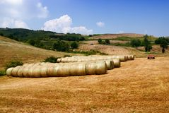 Hay bales grouped Stock Images