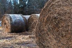 Hay Bales häufte oben auf einem Feld an Lizenzfreie Stockbilder