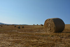 A hay bales on harvested field with many straw bales in horizon. Straw bales on harvested field with many hay bales in horizon and blue sky stock photo