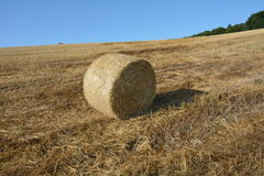 A hay bales on harvested field. Straw bales on harvested field with blue sky Stock Images