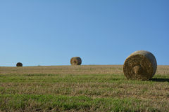 Hay bales on harvested field. Straw bales on harvested field with two  hay bales  in horizon  and blue sky Royalty Free Stock Image