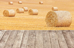 Hay bales on harvested field with wooden boards Royalty Free Stock Image