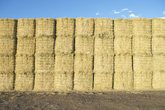 Hay Bales Haystack Under Blue Sky Royalty Free Stock Photos