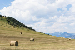 Hay Bales on the Hillside stock photos