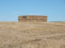 Hay bales on hilltop. Hay bales stacked on a hilltop on the Sussex downs ready for winter feed Royalty Free Stock Images