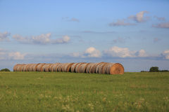Hay bales Royalty Free Stock Images