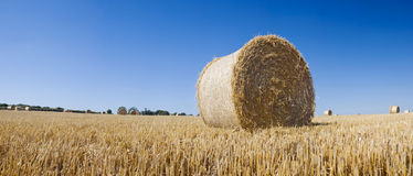 Hay bales, Idyllic rural landscape Stock Photography