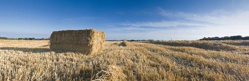Hay bales, Idyllic rural landscape, UK Stock Image
