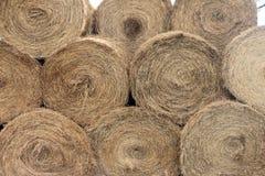 Hay Bales After impilato il raccolto Immagini Stock