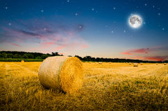 Free Hay Bales In The Night. Royalty Free Stock Photo - 58477015