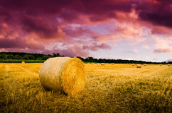 Free Hay Bales In The Night. Royalty Free Stock Photography - 58477057