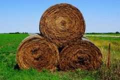 Hay bales in Iowa Stock Image