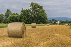 Hay bales. And irrigation in agriculture landscape Stock Photo