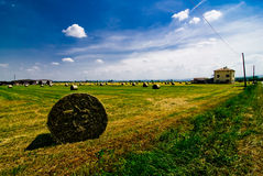Hay bales in Italian field. A view of round bales of hay in a large, open field in Parma province, Italy royalty free stock photography