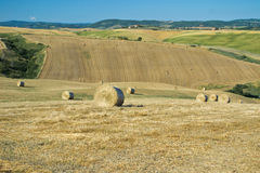 Hay bales landscape Stock Photography
