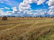 Hay Bales Landscape royaltyfria bilder