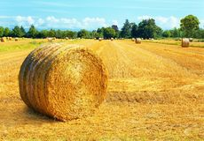 Hay bales landscape stock photo