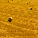 Hay Bales Stock Photo