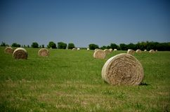 Hay bales in a large field Royalty Free Stock Images