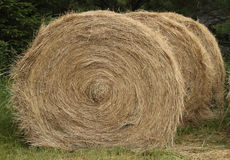 Hay bales Royalty Free Stock Photo