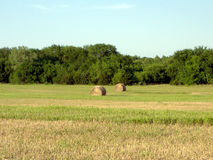 Hay Bales in Late Afternoon Sun 2. Round hay bales in a recently mowed Kansas field in late afternoon sun Stock Photo