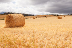 Hay bales laying in field under stormy skies Stock Image