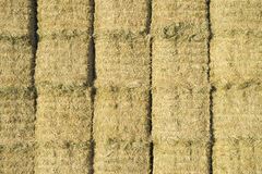 Hay Bales Line Up in Rectangular Haystack Stock Image