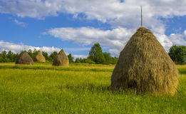 Hay Bales local dans Breb rural, Roumanie Images libres de droits