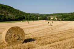 Hay bales lying in a French field. Hay bales in France in the summer Royalty Free Stock Photography
