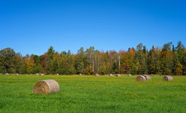 Hay bales in Maine field Royalty Free Stock Photography