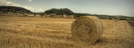 Hay bales in Mallorca, Spain Royalty Free Stock Images