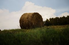 Hay bales in a meadow. Straw and bales on the field. Countryside natural landscape. Bales of hay in the meadow. Straw and bales on the field. Countryside natural stock photos