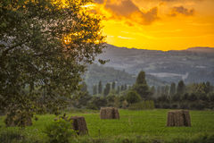 Hay bales in the meadows at sunset,Gubbio, Umbria, Italy Royalty Free Stock Images