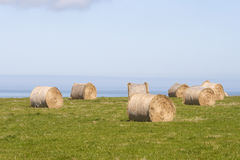 Hay bales near the ocean Stock Images