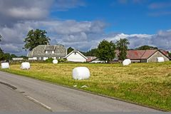 Hay bales in Norway. Hay bales wrapped in white cloth in Norway royalty free stock photos