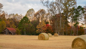 Hay bales and old barn Royalty Free Stock Photo