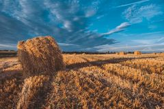 Free Hay Bales On Field In Autumn Weather. Royalty Free Stock Images - 124297209