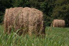 Hay Bales op een Gebied royalty-vrije stock afbeeldingen