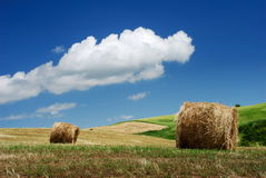 Hay bales over the hillside stock images